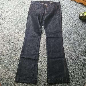 Express STELLA Bootleg Jeans Shiny 2 Embroidered